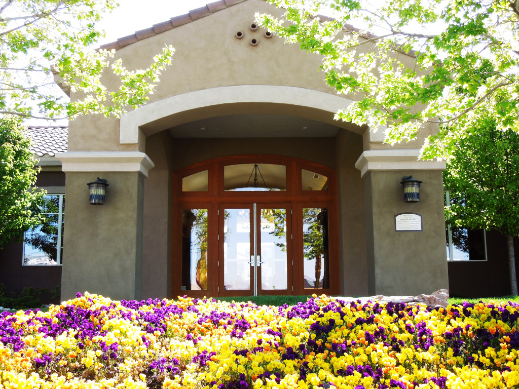 Front of Commercial building with purple and yellow flowers in front