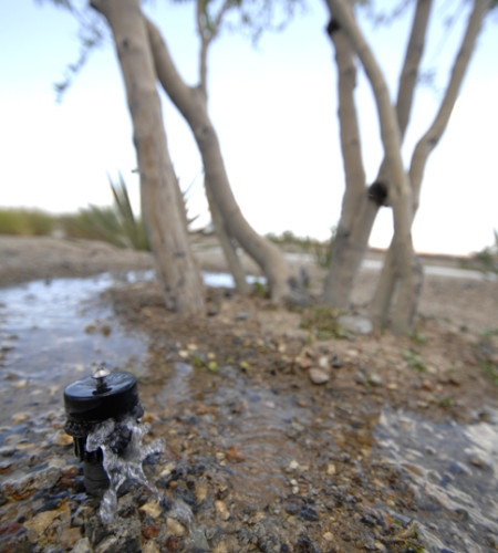 Close up of sprinkler head with rocks and trees in background