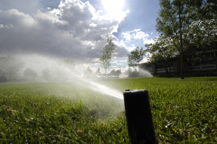 Close up of sprinklers watering grass