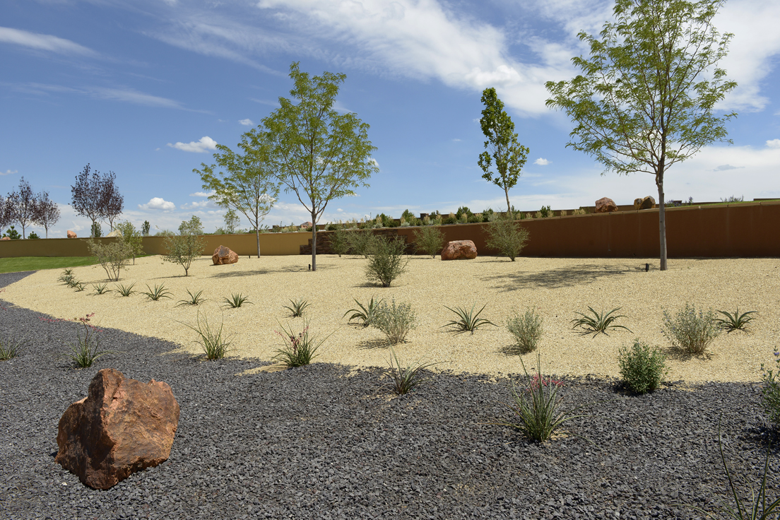 Commercial xeriscape landscaping