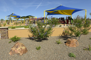 Community park with shade covers and rock and xeriscape surrounding