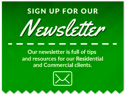 Sign up for our Newsletter - Our newsletter is full of tips and resources for our Residential and Commercial clients.